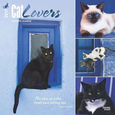 Cat Lovers wall calendar 2017. new & wrapped. Full colour