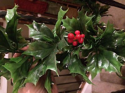 16 Feet Vintage Plastic Christmas Holly Red Berry Garland  3 pieces