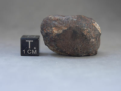 meteorite Beni M'hira - 32.56 grams specimen - buy it while there's still...