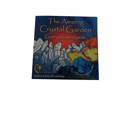 Amazing Crystal Garden Grow Your Own Crystals Educational Scientific