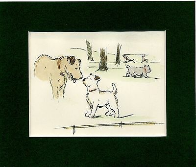 """Lucy Dawson  """" Terriers Meeting In The Park """" Hand Coloured Genuine Vintage 1936"""