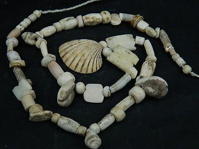 Ancient Shell/Bone Beads Strand Roman 200 BC      #BE312