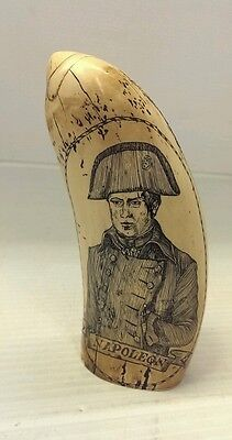 NAPOLEON Scrimshaw Sperm whale tooth 6 in long - resin replica