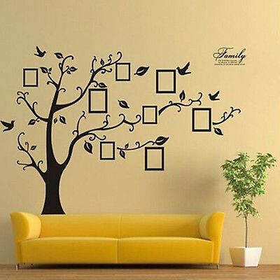 Large Family Tree Bird Wall Sticker Photo Picture Frame Removable Home Art Decor