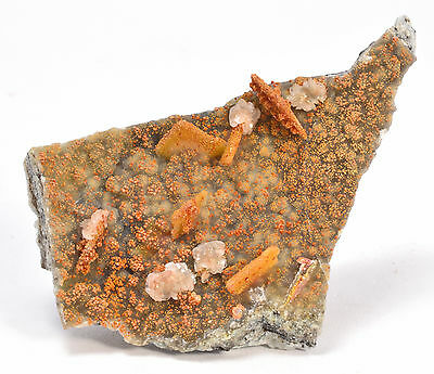 Wulfenite - Classic Barking Spider Mine