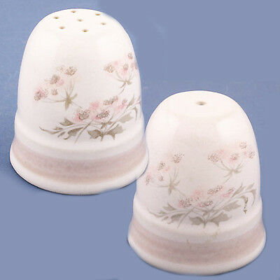 BRITTANY Denby SALT & PEPPER SET NEW NEVER USED made in England STONEWARE