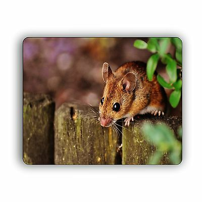 Mouse on the Fence Computer Mouse Pad Size Mousepad