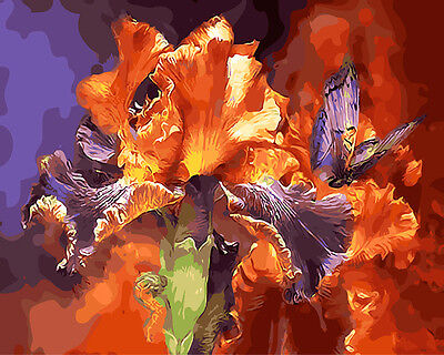 Framed Painting by Number kit Red Flowers Butterfly Blaze Vitality DIY BB7656