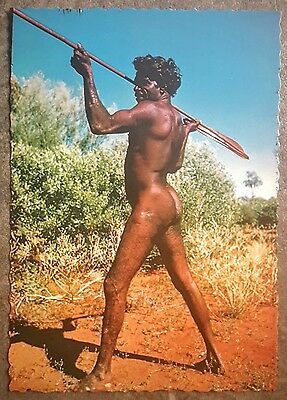 1970s vintage Postcard Australia Aborigine with Spear and Woomera by nucolorvue
