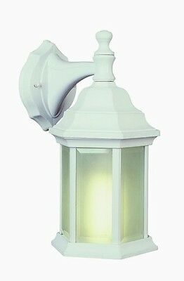 Trans Global Lighting 4349 WH The Standard 1 Light Outdoor Coach - White - Clear