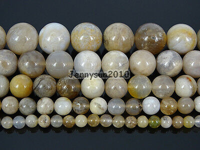 Natural Ocean Fossil Coral Agate Gemstone Round Beads 15.5'' Strand 4mm 6mm 8mm