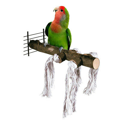 Pet Parrot Raw natural wood Stand Bar Toy Hamster Branch Perches for Bird Cage