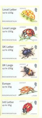 Jersey-Beetles Post and Go mnh - insects 2016