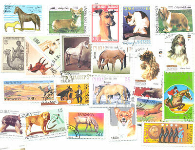 Domestic Animals-200 all different mainly Cats-Dogs-Horses + Camel
