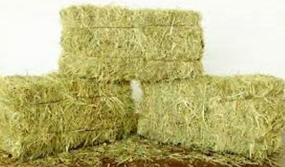 Hay bales - small, Essex