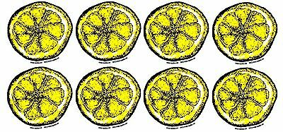 Stone Roses vinyl tribute stickers 8x40mm indie guitar Manchester Madchester