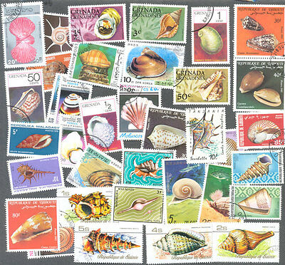 Shells on stamps 100 all different thematic collection-Seashells