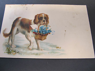 Antique 1906 Art postcard, dog and flowers. Posted Melbourne