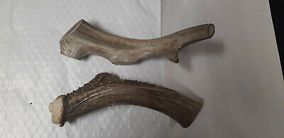 antler dog chews,dog treats, pet toys, natural sheds, organic ,5 pound