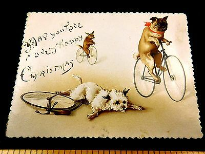 Lovely Anthropomorphic Pug Dogs Riding Bicycles Victorian Christmas Card F42