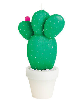 New Sunnylife Round Cactus Candle Large Loundge Living Room Cactus N/A