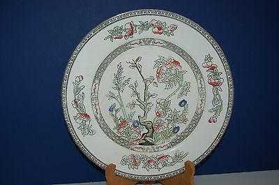 Antique 9 inch Dinner Plate J&G Meakin Hanly England Indian Tree 1912