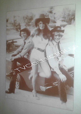 11x14 Sepia Photo~ DUKES OF HAZARD ~Tom Wopat ~Catherine Bach ~John Schneider