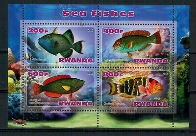 Bloc feuillet neuf ** MNH - Rwanda 2013 - Poissons exotiques Exotic fishes