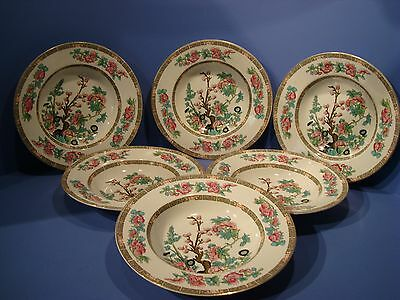 Maddock Indian Tree 6 X Rimmed Dishes