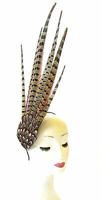 Brown Pheasant Feather Statement Fascinator Races Headpiece Headband Hair 1421