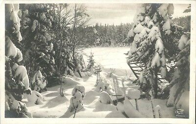 Sweden beautiful forest winter snow photo used vintage postcard