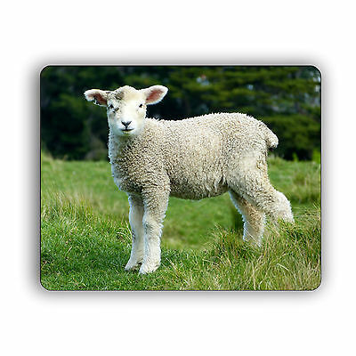 Sheep in the Field Computer Mouse Pad Mousepad