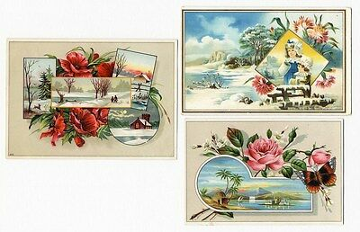 SNOW - TROPICS & FLORAL Winter Victorian Cards 1880s - 3 Greeting Cards ROSES