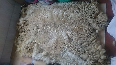 2.5kg Raw Sheeps Fleece Suffolk White Spinning Weaving Stuffing Insulation 26A