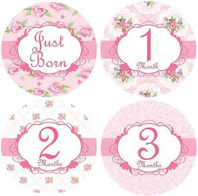 M3 Belly Doodles 16 baby month milestone stickers for girls Roses