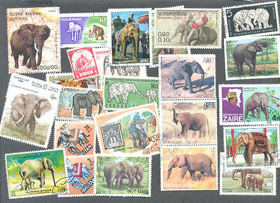 Elephants 100 all different collection