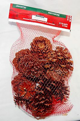 Pinecones Ashland Christmas Unscented Bag Around 12ea USA Decorations 45D
