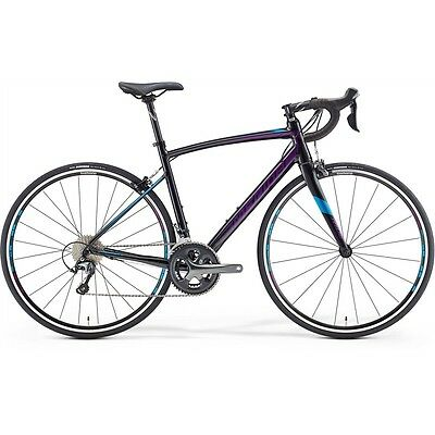 Ride Juliet 300 - 50Cm - Black (Violet / Blue Decals) 2106