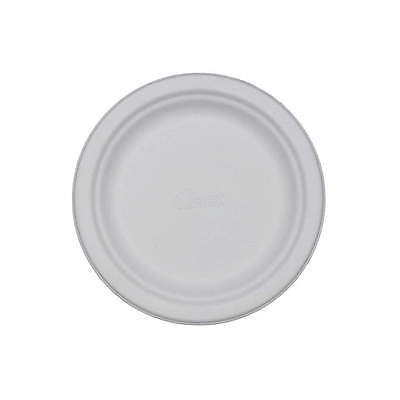 "CHINET 10-1/2"" Round Disposable Plate,  White&#x3b; PK500 21217"