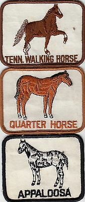 """Three rectangular 4"""" by 3"""" UNUSED cloth horse patches see scan"""