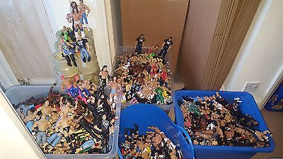 Wwe Basic Figures Hundreds To Choose From Massive Sale Combined Post Legends P1
