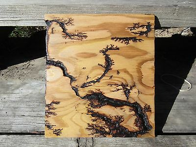HIGH VOLTAGE Lichtenberg Design Wood Fractal Tesla Lightning Design Art 004