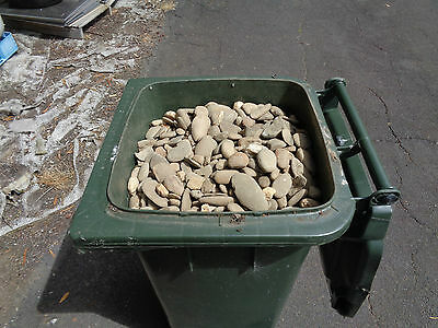 garden rocks garden pebbles river rocks small-med size