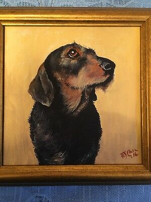 Wire Haired Dachshund Original Painting on Canvas