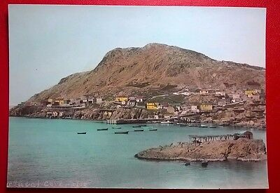 1950's COLOR PHOTO, PETTY HARBOUR, NEWFOUNDLAND, CANADA (6 3/4 X 4 3/4 INCHES)