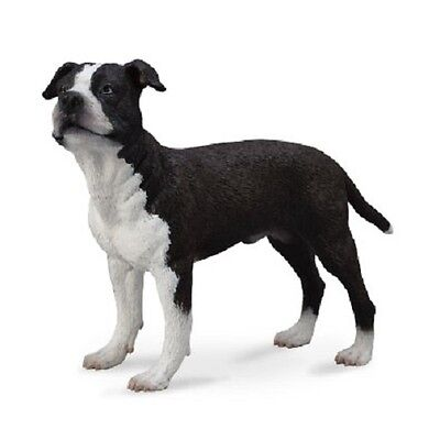 Collecta Pets Model - American Staffordshire Terrier