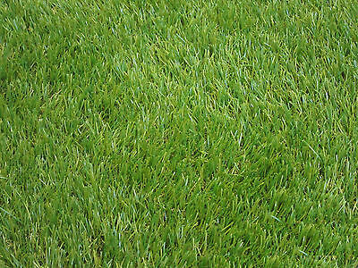 30Mm Bicolor Artificial Grass & Turf