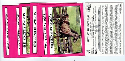 1X SUNDAY SILENCE 1990 Star KENTUCKY DERBY #R115 Horse Racing Lots Availabl NRMT