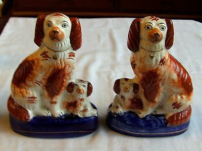"""Pair Antique English Victorian Staffordshire Pottery Spaniel Dogs With Pups 7"""""""