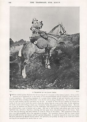 1900 Antique Print-Boer War- A Trumpeter Of The Scots Greys